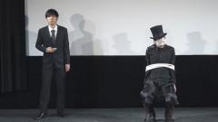トンツカタン単独ライブ「トンツカタン�U〜さよなら さよなら こんにちは〜」/動画