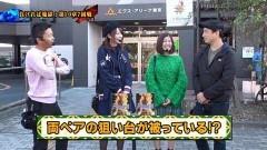 #115 ペアパチ/仮面ライダーフルスロットル闇/大海4/動画