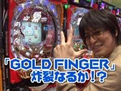 #131 ビジュRパチンコ劇場CR GO!GO!郷3/CRA新海物語/動画