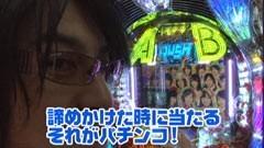 #220 ビジュRパチンコ劇場/AKB48 バラの儀式/牙狼金色になれXX/動画