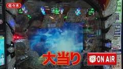 #238 オリジナル必勝法セレクション/北斗無双/大海4/P義風堂々2/新・必殺仕置人/動画
