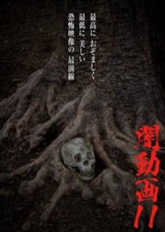 闇動画11 恐怖の心霊怪奇映像集/動画