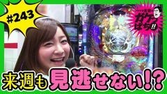 #243 ガケっぱち!!/嶋田 修平(シマッシュレコード)/動画