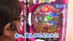 #261 ヒロシ・ヤングアワー/真・北斗無双/海物語IN沖縄4/動画