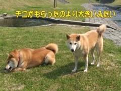 オヤツの大きさ紛争勃発!/動画