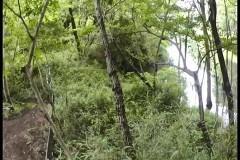 恐すぎる監視カメラ 危険地帯編 10編/動画