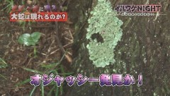 イルワケNIGHT ファイル2 雄蛇ヶ池の大蛇(千葉・東金市) vol.7/動画