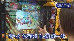 #5 マネメス豚/ルパンEnd/花の慶次X/ヱヴァ11/動画