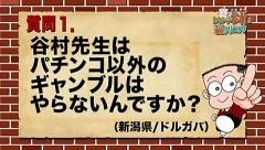 #349 オリジナル必勝法セレクション/谷村ひとしのQ&A/動画