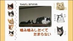 #28 噛み噛みしたくてたまらない/動画