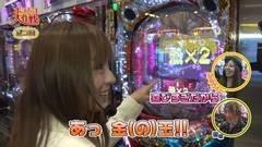 #37 ポコポコ/CR009/SUPER電役ナナシーDX/ヱヴァ10/動画