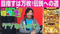 #49 はっちゃき/秘宝伝 〜伝説への道〜/動画