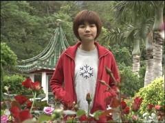 第4話 薔薇のトゲ/動画