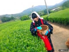 #11 お茶の里・宇治から聞こえる音色/動画