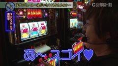 #34 スロじぇくとC/ハナビ/凱旋/バーサス/強敵/ハーデス/動画