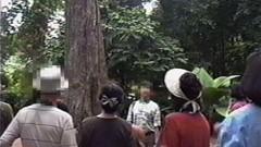 #1 植物園/動画