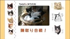 #16 陣取り合戦!/動画