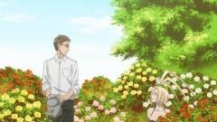 第14話 Looks breed love./動画