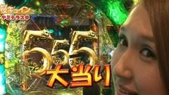 #13 ペアパチ/AKB48 バラの儀式/CR牙狼 金色になれ/動画