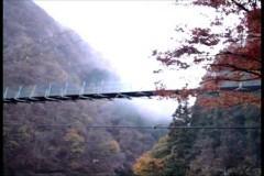 〜完全保存版〜恐怖の怨霊ビデオ 5/動画