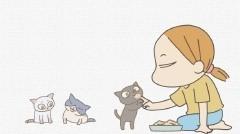 #11 伝播する文化/動画