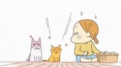 #13 拾いもの1/動画