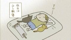 #35 びっくりトメ/あっしがついてる/動画