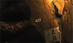 #5 鍾乳洞/動画