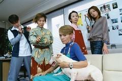 ペットシッター 沢口華子の事件簿1 後追い自殺するレトリーバーの謎/動画