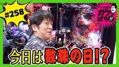 #258 ガケっぱち!!/中川パラダイス(ウーマンラッシュアワー)/動画