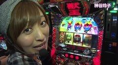 #273 極セレクション/獣王/攻殻機動隊2/動画