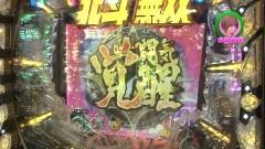 #230 ロックオン/ハーデス/P番長2/北斗無双/北斗7/天龍/動画