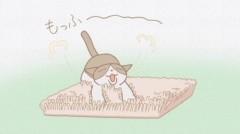 #44 尾張の黒豹、ぼん太夫/トメのもふ/動画