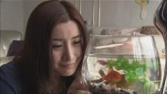 第11話/動画