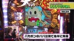 #178 ビワコのラブファイター/CR天才バカボン-V!V!バカボット!/動画