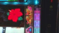 #171 必勝本セレクション/沖ドキ!/動画