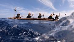 スギメ(3万年前の航海 徹底再現プロジェクト)/動画