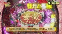 #71 マニアの遺言/CR牡丹と薔薇RR/エヴァZF/動画