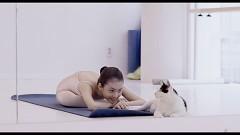 私と猫のサランヘヨ(字幕版)/動画