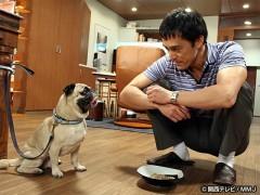 #8 犬がキライで悪いか!/動画