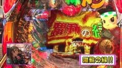 #177 ビワコのラブファイター/CR緑ドン 花火DEボ〜ンジョルノ/動画