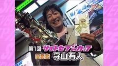 #529 サイトセブンカップ/CRAアレ!キング/CR南国育ち/CR新清流物語/天下一閃/動画
