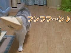 #22 紙袋マイスター・うに/動画