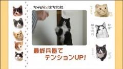 #23 最終兵器でテンションUP!/動画