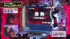 #208 ビワコのラブファイター/CR Another FPS/動画