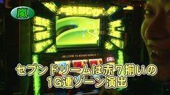 #250 パチバト「19シーズン」/ハナハナ-30/スーパービンゴネオ/動画