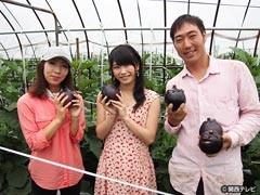 #1 京の夏の色/動画