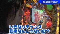 #222 ビジュRパチンコ劇場/仮面ライダーV3 GOL D Version /動画
