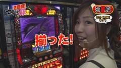 #24 マネ豚2/ パチスロ星矢覚醒 /ハーデス/動画