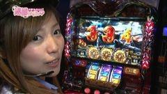 #16 逮捕しちゃうゾ/アナゴ/バジリスク絆/アラジンAII/動画